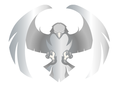Skyway Hawk Silver Logo