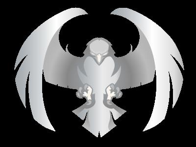 Skyway Hawk Silver Logo